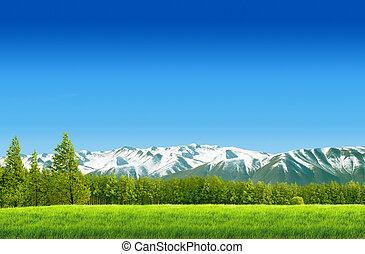 синий, moutain, небо, поле, зеленый, пейзаж