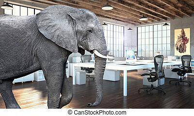 слон, комната