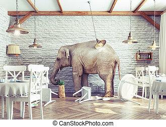 слон, ресторан, спокойный, интерьер