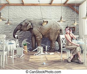 слон, ресторан