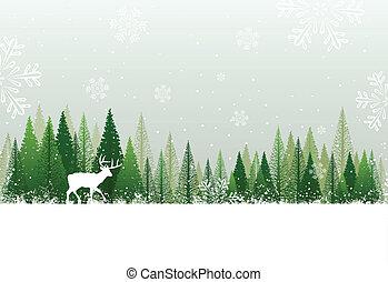 снежно, лес, задний план, зима