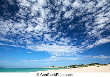 солнечно, небо, пляж, сценический