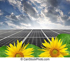 солнечный, panels, энергия