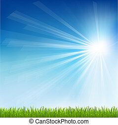 солнце, трава, зеленый, луч