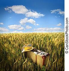 солома, шапка, старый, поле, чемодан