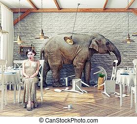 спокойный, ресторан, слон