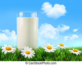 стакан, трава, daisies, молоко