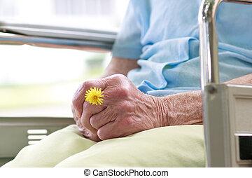 старшая, женщина, инвалидная коляска, сидящий