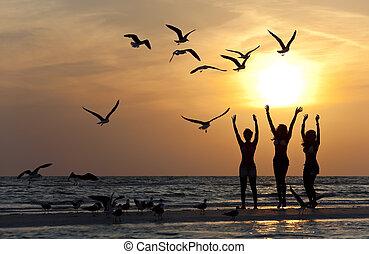 танцы, молодой, три, закат солнца, пляж, женщины