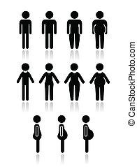 тело, женщины, человек, тип, icons