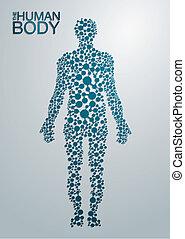 тело, концепция, человек