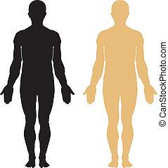 тело, силуэт, человек