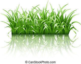 трава, вектор, зеленый
