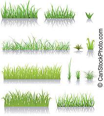 трава, зеленый, задавать