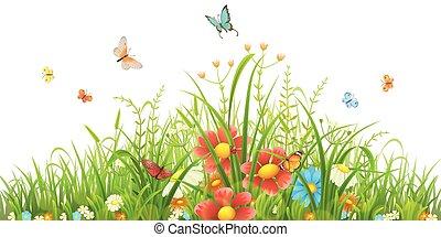 трава, зеленый, цветы