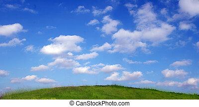 трава, небо