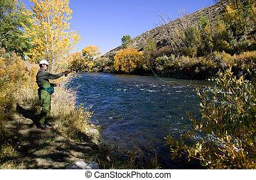 траки, летать, река, ловит рыбу