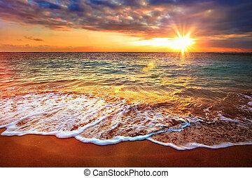 тропический, в течение, спокойный, восход, океан