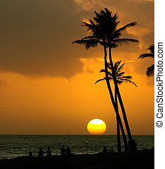 тропический, закат солнца