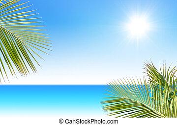 тропический, море