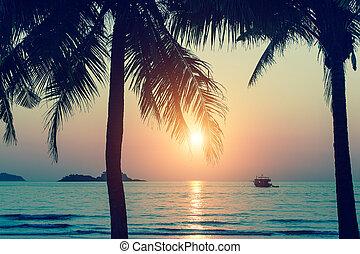 тропический, остров, закат солнца