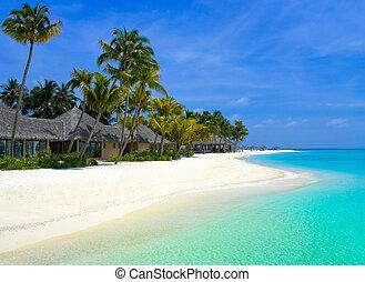 тропический, остров, bungalows, пляж