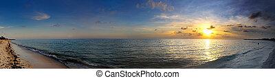 тропический, панорама, пляж