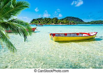 тропический, пляж, лодка