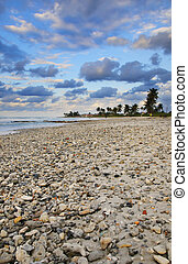 тропический, пляж, место действия, закат солнца, куба