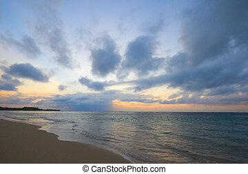 тропический, пляж, спокойный, восход, океан