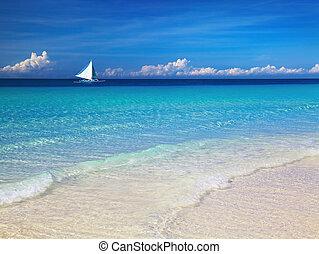 тропический, пляж, philippines
