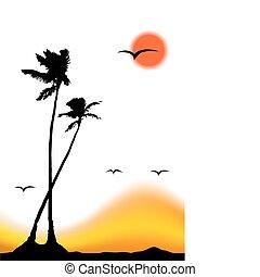 тропический, силуэт, пальма, дерево, закат солнца