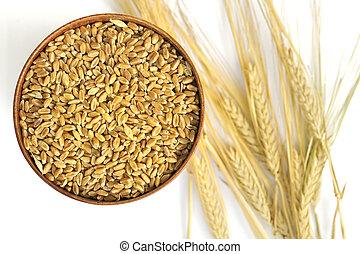 уборка урожая, пшеница