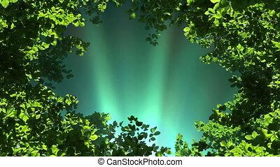 фантазия, лес