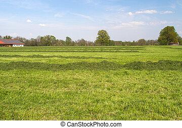 ферма, земельные участки, бавария