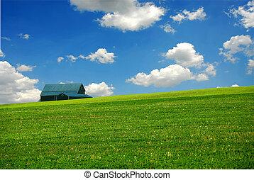 ферма, сарай, поле
