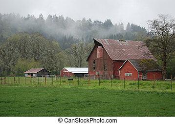 ферма, туман