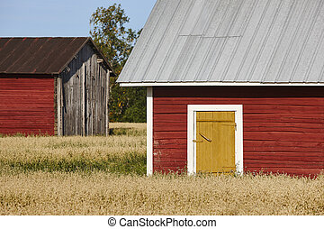 ферма, финский, сельская местность, традиционный, деревянный, красный