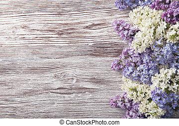 филиал, сирень, цветы, дерево, цвести, марочный, задний план