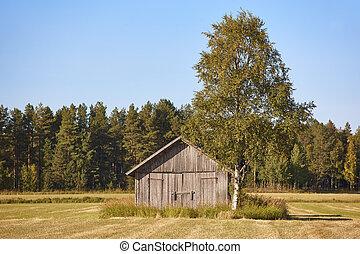 финляндия, финский, деревянный, countryside., традиционный, ферма, пейзаж