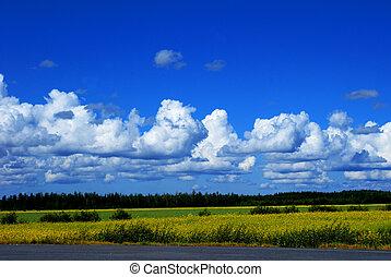 финский, пейзаж