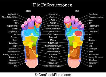 фут, рефлексология, черный, диаграмма, немецкий