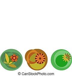 цветок, красочный, icons, абстрактные, иллюстрация, вектор, белый