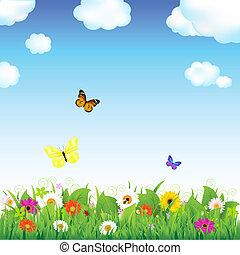 цветок, луг, butterflies