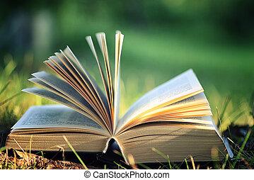 цветок, открытый, книга, трава