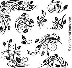 цветочный, вектор, задавать, дизайн, elements