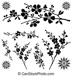 цветочный, вектор, ornaments