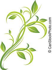 цветочный, зеленый, дизайн