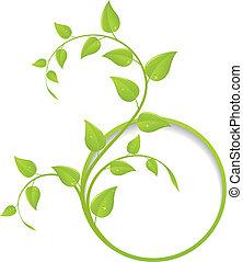 цветочный, рамка, зеленый