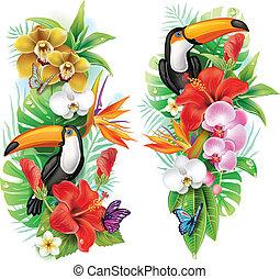 цветы, тропический, butterflies, тукан